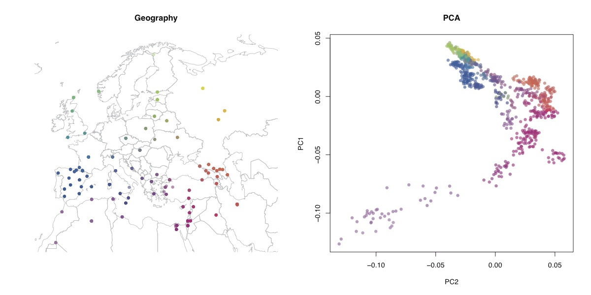 Geographic distribution of samples and PCA